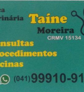 Taíne Moreira – Médica Veterinária